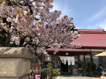写真 2018-04-30 13 40 21_R.jpg