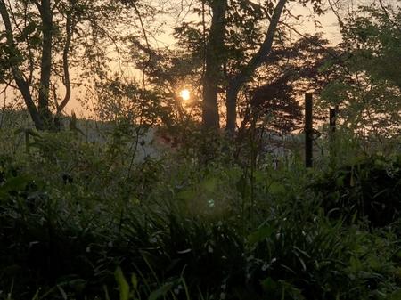 写真 2018-04-30 5 14 38 (1)_R.jpg